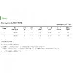 ct_fe-sl_prototype